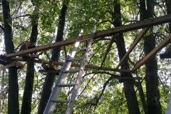 Stovyklavietė Gervių lizdas. Namelio medyje statybos