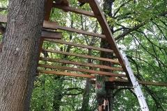 Gervinių stovykla. Ąžuolų pamaina. Namelio medyje platforma